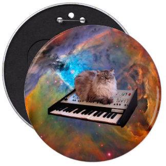 Gato en un teclado en espacio pin redondo de 6 pulgadas