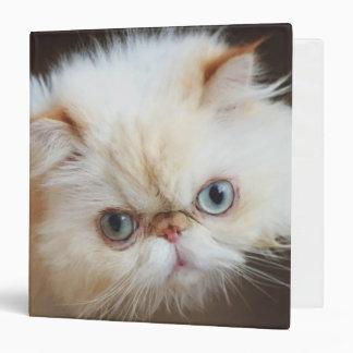 """Gato en una caja carpeta 1 1/2"""""""
