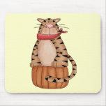 Gato en una calabaza tapetes de raton