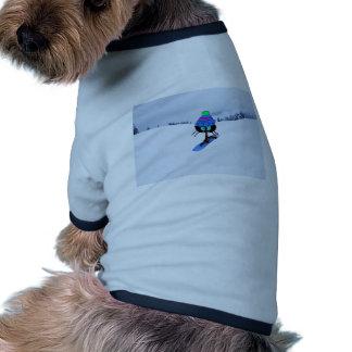 Gato en una snowboard ropa de perro