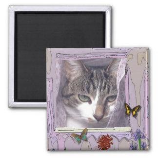 Gato en ventana imán cuadrado