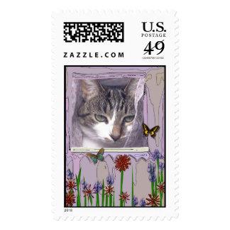 Gato en ventana sellos postales