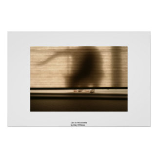 Gato en Windowsill Posters