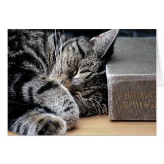 Gato encrespado para arriba con una buena tarjeta
