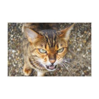 Gato enojado de Bengala Impresiones En Lona Estiradas