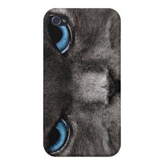 Gato enojado iPhone 4 carcasas