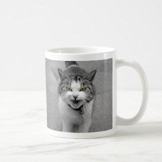 Gato enojado taza básica blanca