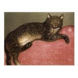 Gato estirado en el sofá - por Theophile Steinlen Postal