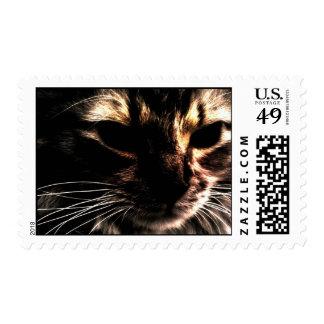 Gato fantasma sello