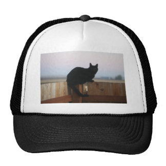 Gato fantasmagórico gorras de camionero
