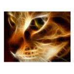 Gato fantasmal hermoso del fuego tarjetas postales