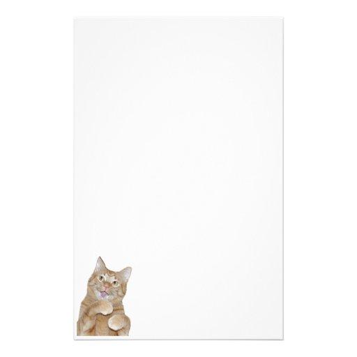 Gato feliz papeleria de diseño