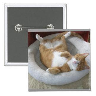 Gato feliz pin cuadrado