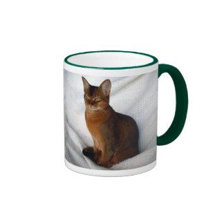 Gato femenino rubicundo abisinio tazas de café