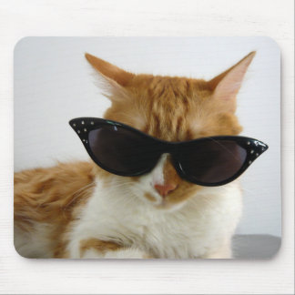 Gato fresco con las gafas de sol Mousepad