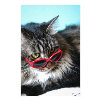 Gato fresco con los vidrios rojos papelería
