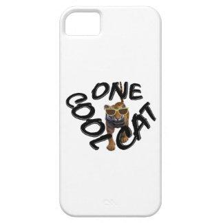 Gato fresco funda para iPhone SE/5/5s