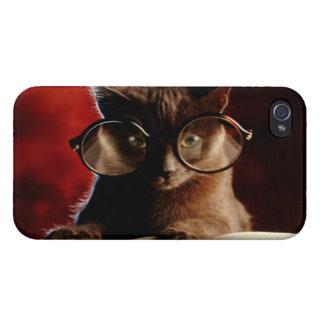 Gato fresco iPhone 4 carcasas