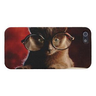 Gato fresco iPhone 5 funda