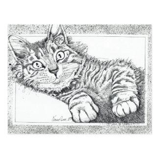Gato fresco postales