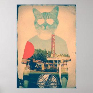 Gato fresco póster