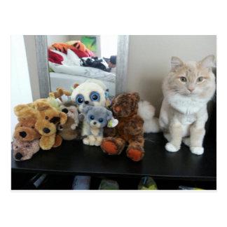 Gato fruslería
