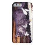 gato funda de iPhone 6 barely there