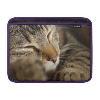 gato funda macbook air