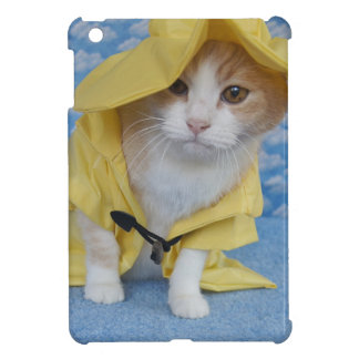 Gato/gatito en impermeable amarillo del impermeabl