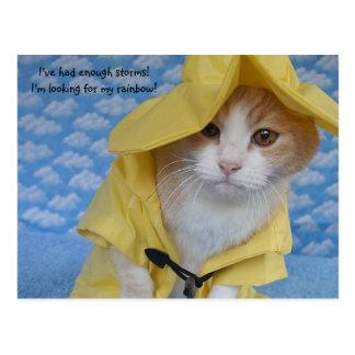 Gato/gatito en impermeable amarillo del impermeabl postales