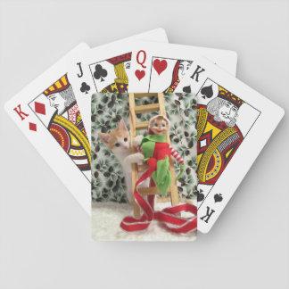 Gato, gatito, navidad, rescate, foto barajas de cartas