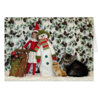Gato, gatito, navidad, rescate, foto tarjeta de felicitación