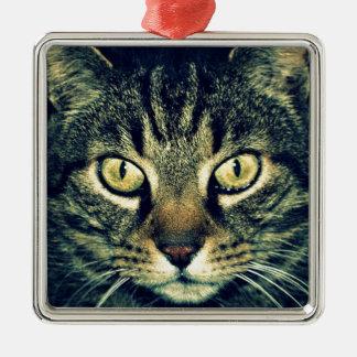 Gato glaring gris adorno navideño cuadrado de metal