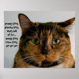 Gato gordo con la actitud, canción gruñona del gat póster
