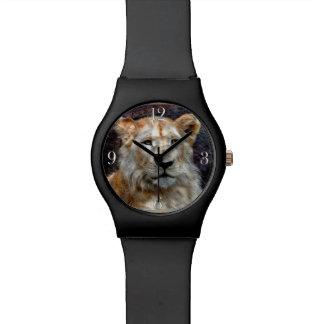 Gato grande blanco salvaje de Cub de león Reloj De Mano