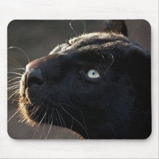 Gato grande del negro de la impresión de Mousepad Alfombrilla De Ratón