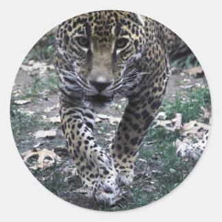 gato grande pegatina redonda