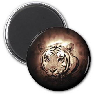 Gato grande salvaje del tigre del color de la imán redondo 5 cm