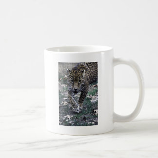 gato grande taza