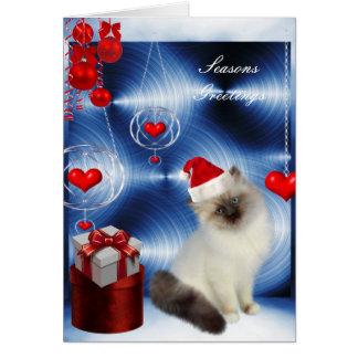 Gato gris blanco mullido del navidad de la tarjeta