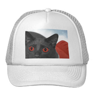 Gato gris con la imagen mezclada ojos del naranja gorros