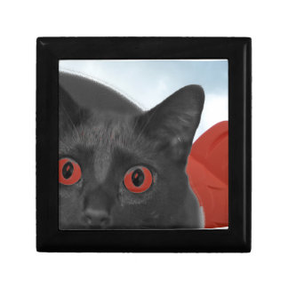 Gato gris con la imagen mezclada ojos del naranja caja de recuerdo