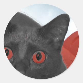 Gato gris con la imagen mezclada ojos del naranja etiquetas redondas