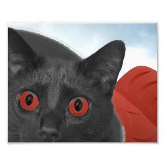 Gato gris con la imagen mezclada ojos del naranja impresión fotográfica