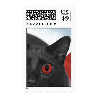 Gato gris con la imagen mezclada ojos del naranja franqueo