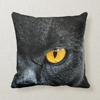 Gato gris con los ojos anaranjados cojín