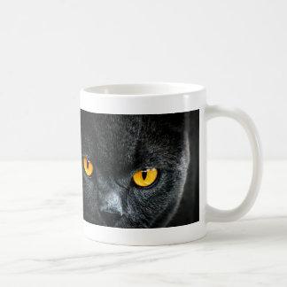 Gato gris con los ojos anaranjados taza
