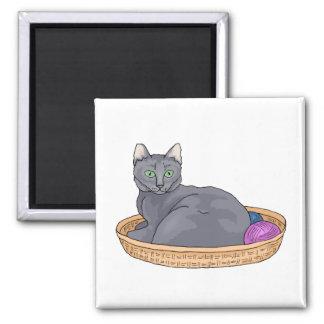 Gato gris de la cesta imán cuadrado