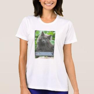 Gato gris de pelo largo camisetas