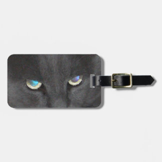 Gato gris del gatito de la diversión con los ojos etiquetas de equipaje